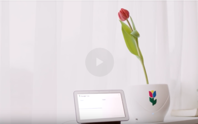 The best #AprilFoolsDay Fools' joke from around the web ever :) – #Google Tulip.