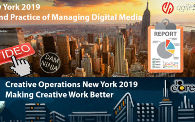 DAMNY 2019 – Content is King but distribution is Queen.