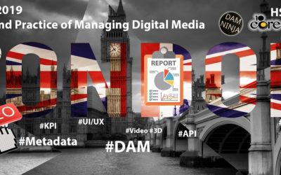 DAMEU 2019, report and analysis