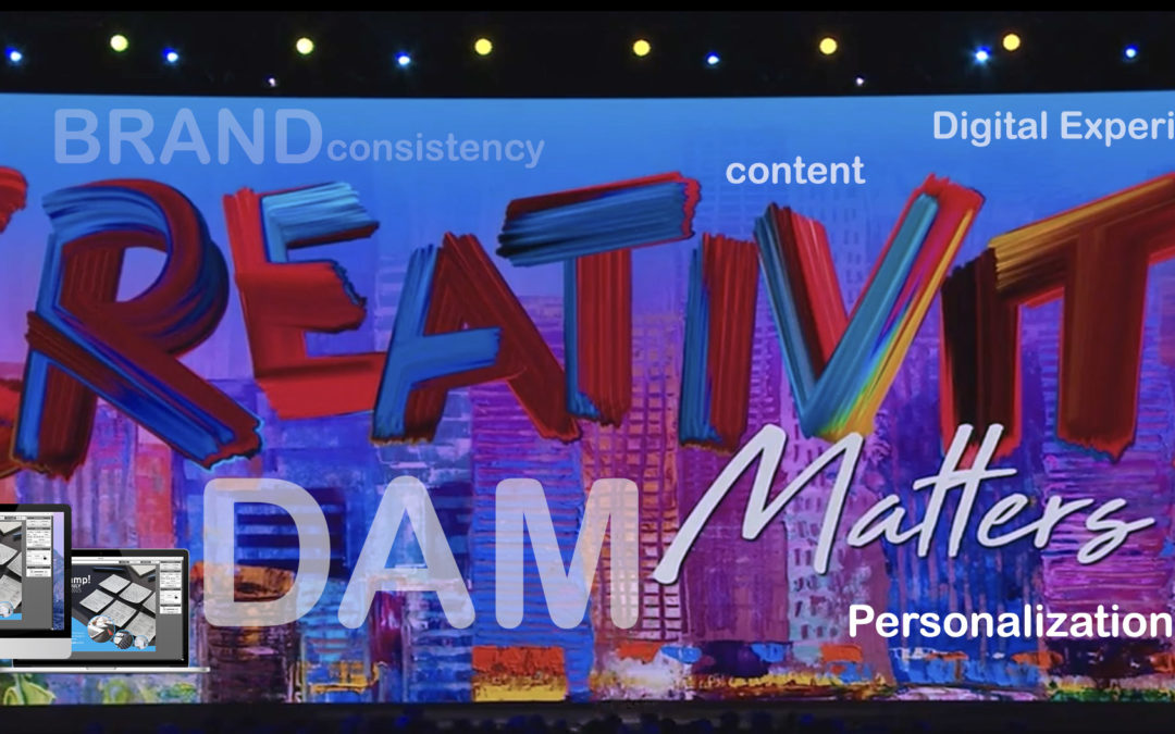 DAM to create unique digital experiences for brands