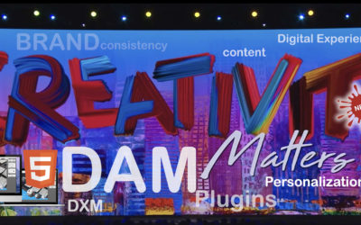 DAM & Creative Operations for Brands and Agencies