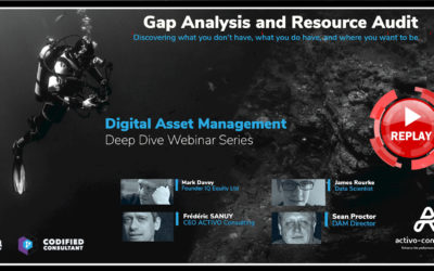 Getting DAM Right: Gap Analysis – Resource Audits