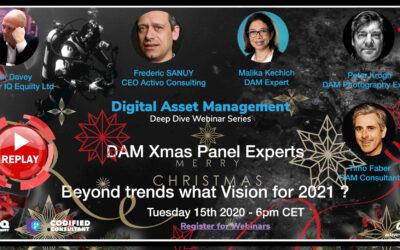 Webinar Replay – DAM Christmas Panel – 2021 and beyond